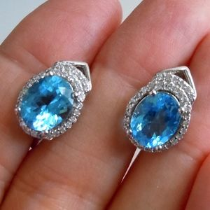 Jewelry - Cubic Zirconia & Blue Leverback Earrings